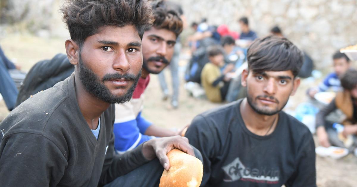 Ukraina zaproponowała przyjęcie części uchodźców z Afganistanu
