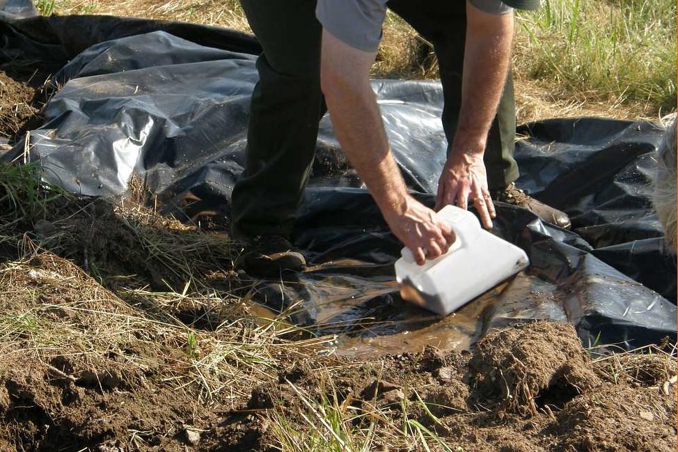 Makabryczne odkrycie w Rosji. Archeologowie odkopali masowy grób 3,5 tys. ofiar nazistów