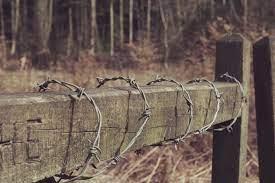 Litwa stawia ogrodzenie z drutu kolczastego na granicy z Białorusią